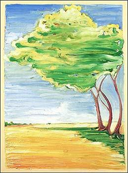 Image3 Wind